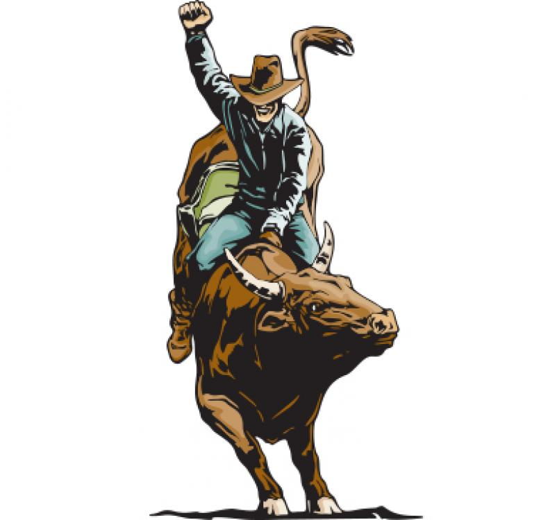 chicago professional bull riding pcb equipment