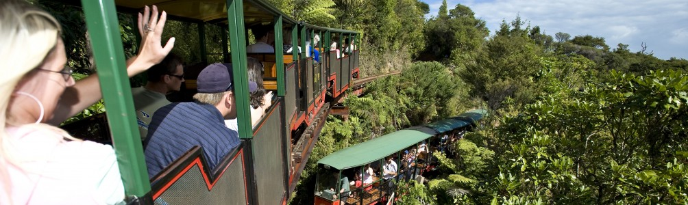 People enjoying the one hour train journey at Driving Creek Railway